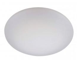 28W LED Oyster Light