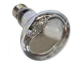 Martec Replacement 100w R80 Light Globe